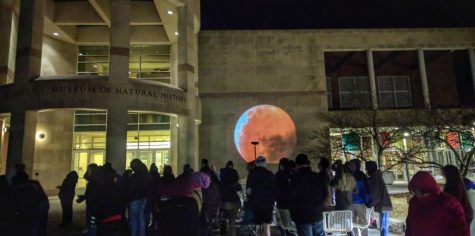 The display of the moon on the walls of the Sam Noble Museum of Natural History