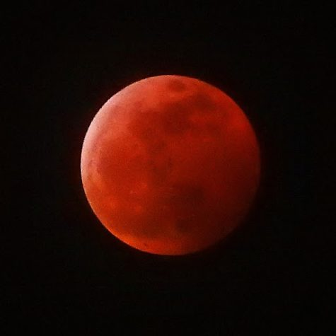 Students were amazed as the moon changed colors