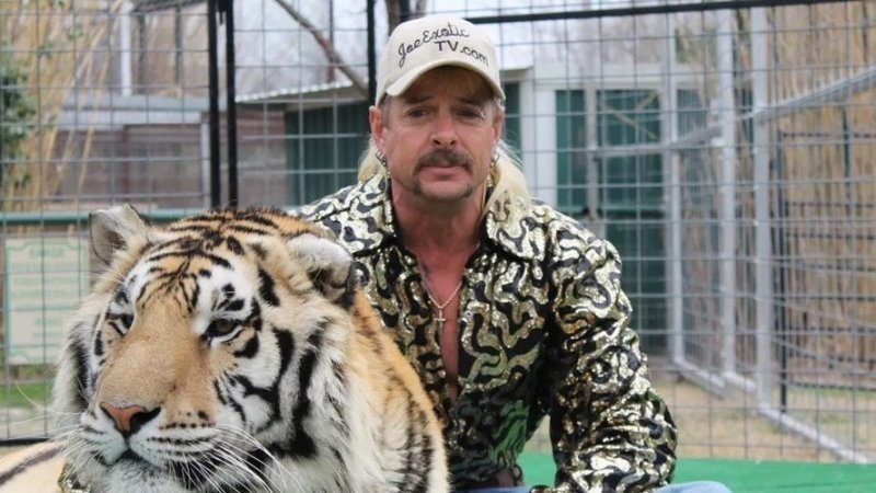 'Tiger King' is a true docuseries on Netflix about the famous zookeeper Joe Exotic.