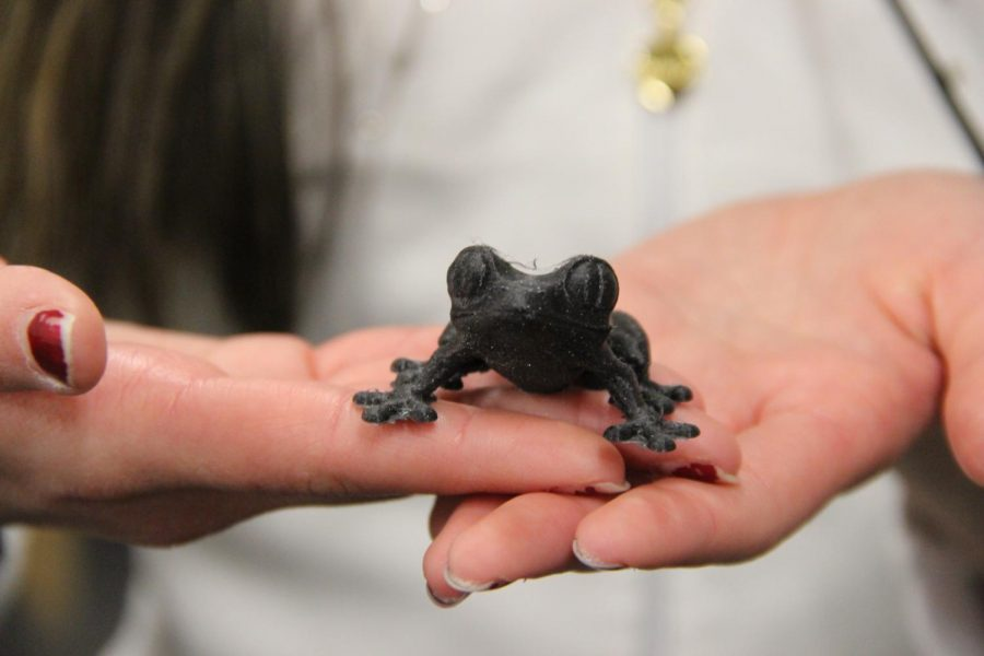 A 3D printed Tree-Frog